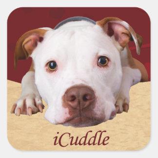 Sticker Carré iCuddle Pitbull