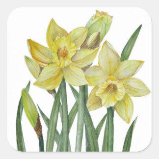 Sticker Carré Illustration de portrait de fleur de jonquilles