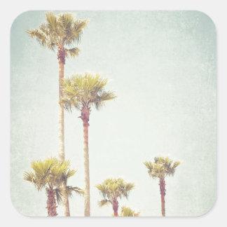 Sticker Carré La Californie rêvant la rétro photographie de