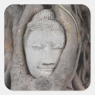 Sticker Carré La tête de la Thaïlande de Bouddha a entouré par