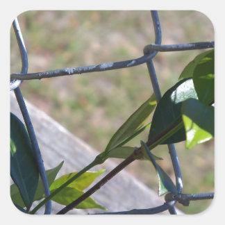 Sticker Carré la vigne une vie de barrière de maillon de chaîne