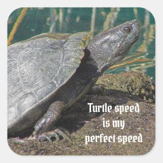 Sticker Carré La vitesse humoristique de tortue est mon animal