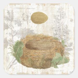 Sticker Carré Le nid d'un oiseau avec un oeuf de Brown
