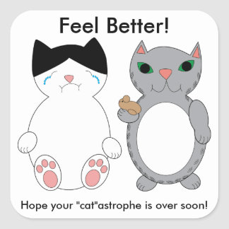 Sticker Carré Les chats sentent une meilleure coutume