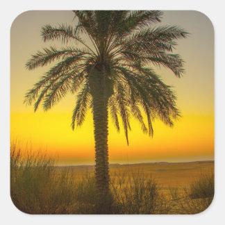 Sticker Carré Lever de soleil de palmier