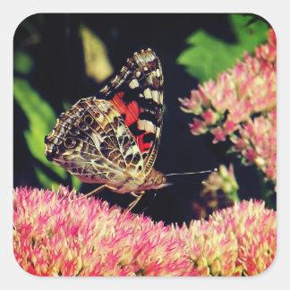 Sticker Carré Madame peinte Butterfly sur les fleurs roses