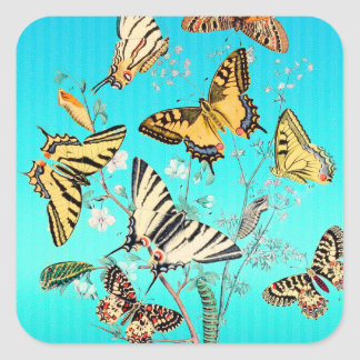 Sticker Carré Mélange bleu de papillon