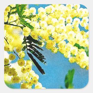 Sticker Carré Mimosa de France