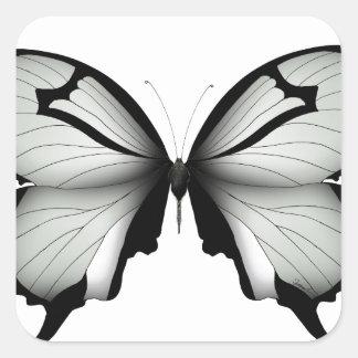Sticker Carré Papillon sage de chasseur de vallée
