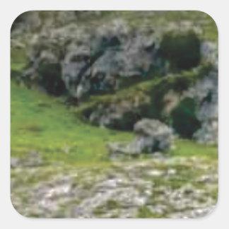 Sticker Carré pierre verte de merveille