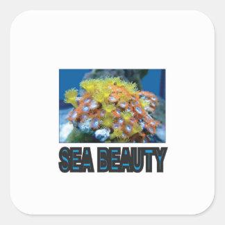Sticker Carré pile de beauté de mer