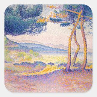 Sticker Carré Pins le long du rivage
