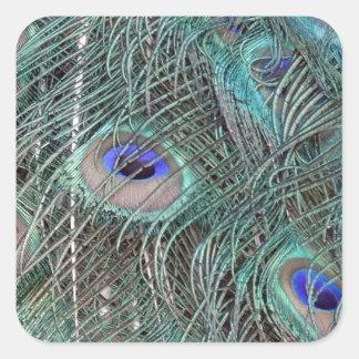 Sticker Carré plumes de paon