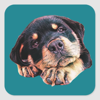 Sticker Carré Race allemande canine de chien de Rott d'amour de