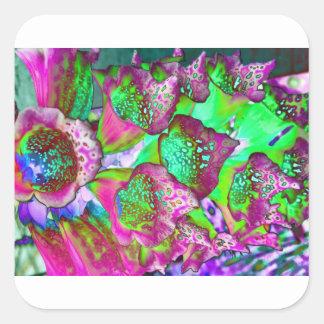 Sticker Carré rêve de couleur