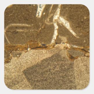 Sticker Carré Section mince de carbonate triassique sous le