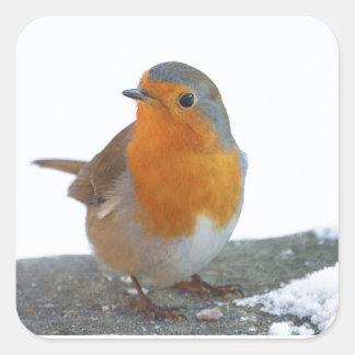 Sticker Carré Sein de rouge de Robin