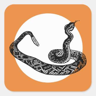 Sticker Carré serpent de hochet