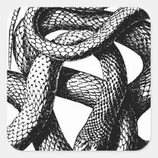 Sticker Carré Serpent tordu