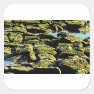 Sticker Carré texture verte de bloc