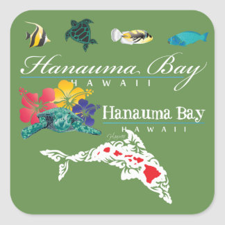 Sticker Carré Tortue de dauphins d'Hawaï