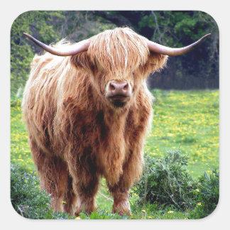 Sticker Carré Vache avec le beau paysage de nature de grands