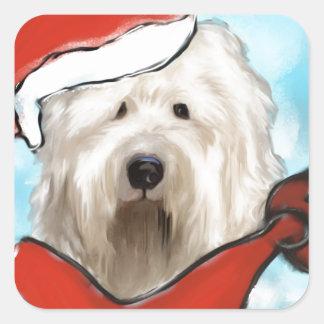 Sticker Carré Vieux chien de moutons anglais