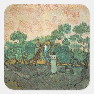 Sticker Carré Vincent van Gogh | les récolteuses olives,