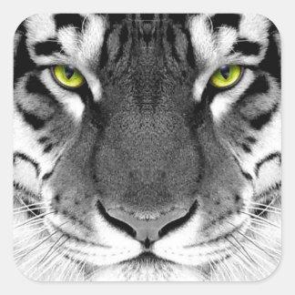 Sticker Carré Visage de tigre - tigre blanc - tigre de yeux -