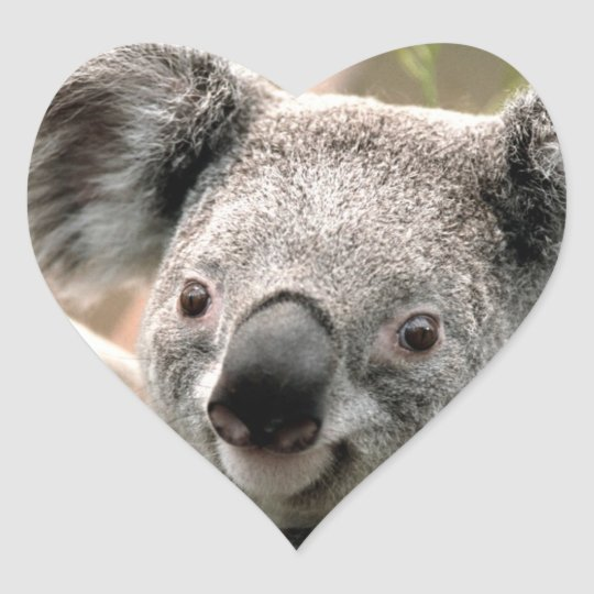 Sticker Cœur Auto-Koala-Collant