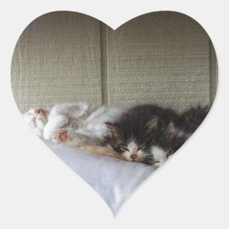 Sticker Cœur Beautés de sommeil