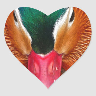 Sticker Cœur canard #2