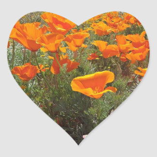 Sticker Cœur Champ orange de pavot des fleurs