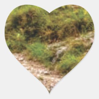 Sticker Cœur chemin herbeux