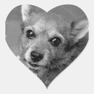 Sticker Cœur chien