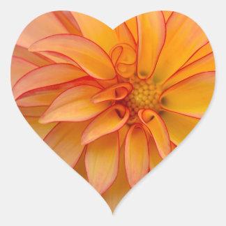 Sticker Cœur Complètement de la gloire