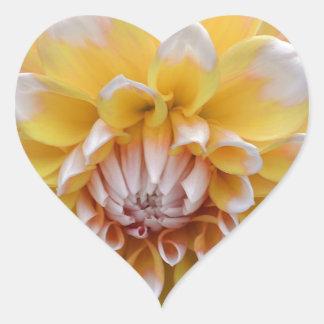 Sticker Cœur Dahlia jaune et blanc