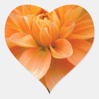 Sticker Cœur Dahlia orange