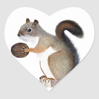 Sticker Cœur Écureuil de boomer