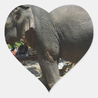 Sticker Cœur Éléphants en Thaïlande