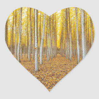 Sticker Cœur Ferme d'arbre de peuplier dans Boardman Orégon