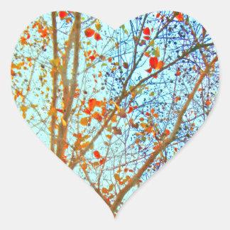 Sticker Cœur Feuille orange d'automne et ciel bleu