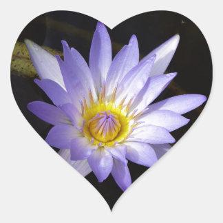 Sticker Cœur lotus bleu du Nil