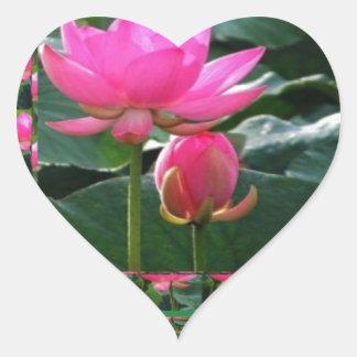 Sticker Cœur LOTUS : Jardin de vert de rose rose de Chakra