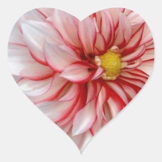 Sticker Cœur Menthe poivrée florale