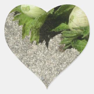 Sticker Cœur Noisettes vertes fraîches sur le plancher