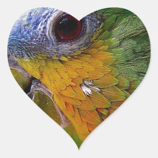 Sticker Cœur Oiseau exotique de vert d'oiseau d'animaux