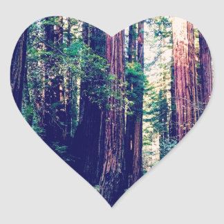 Sticker Cœur Séquoias de Californie