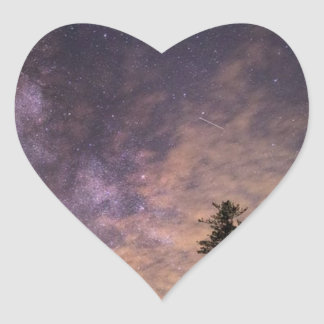 Sticker Cœur Silhouette des arbres la nuit
