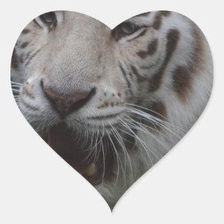Sticker Cœur Tigre blanc